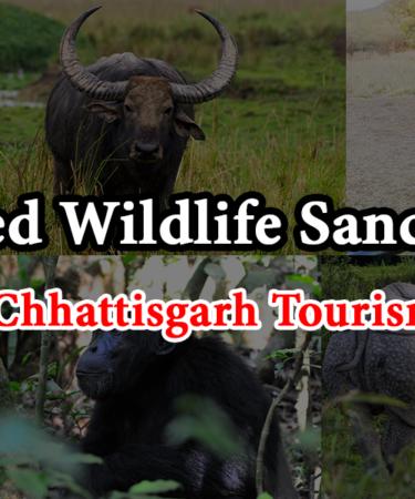 Pamed Wildlife Sanctuary